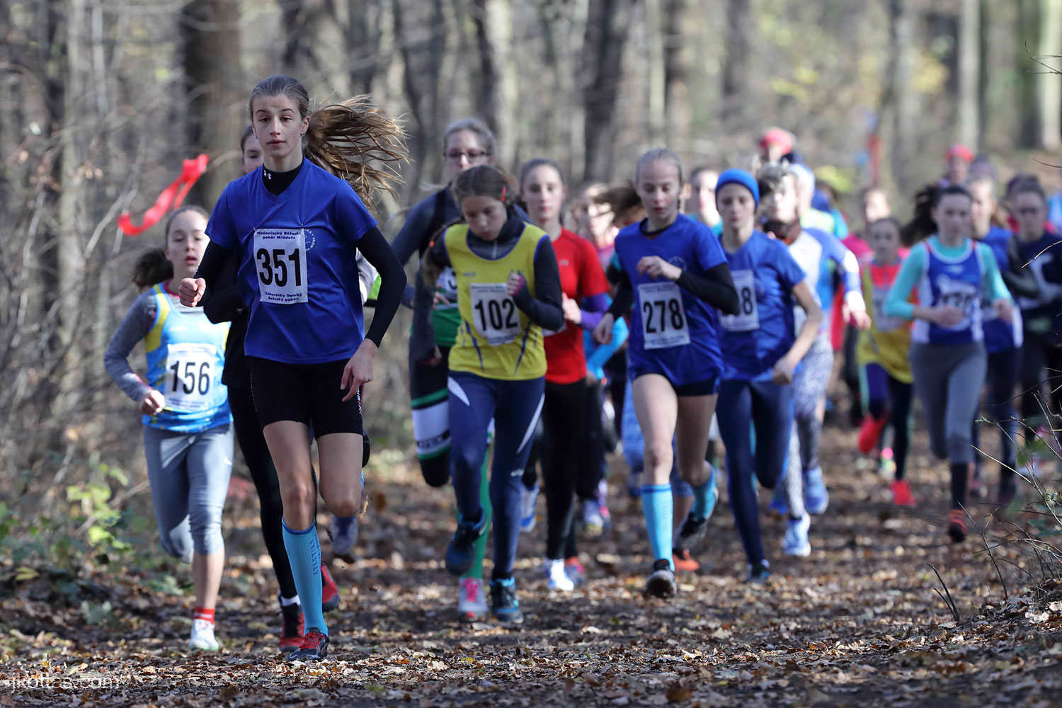 cross-country-ms-championship-hodonin-05