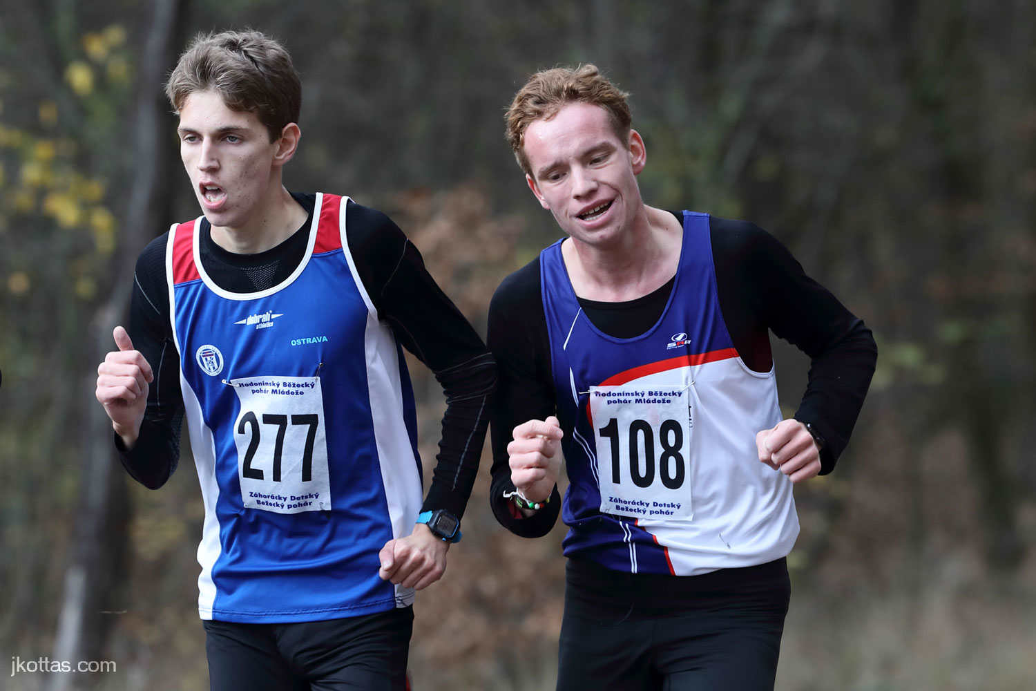 cross-country-ms-championship-hodonin-15